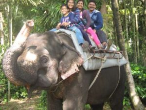elephant ride thekkady