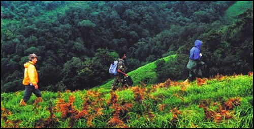 Explore Thekkady &  Gavi (2 Night 3 Days for 4 people-Rs-23200)