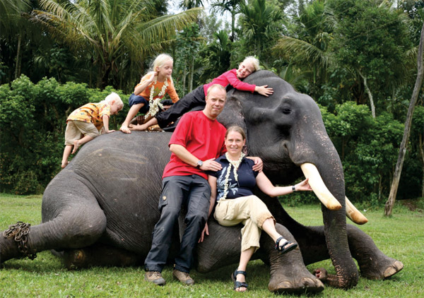 2A- Elephant Package 90 minutes