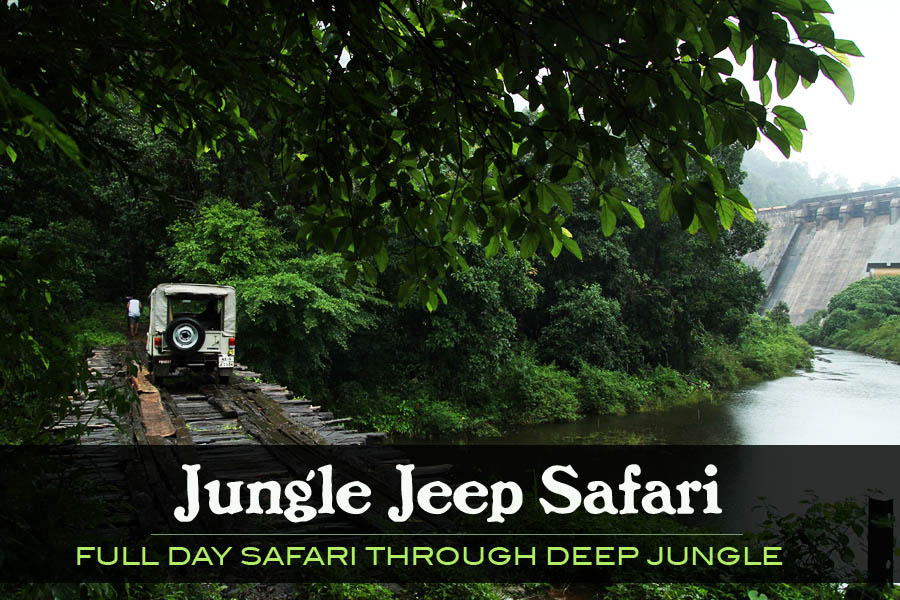 A . Jungle jeep safari Gavi  (only full day safari)
