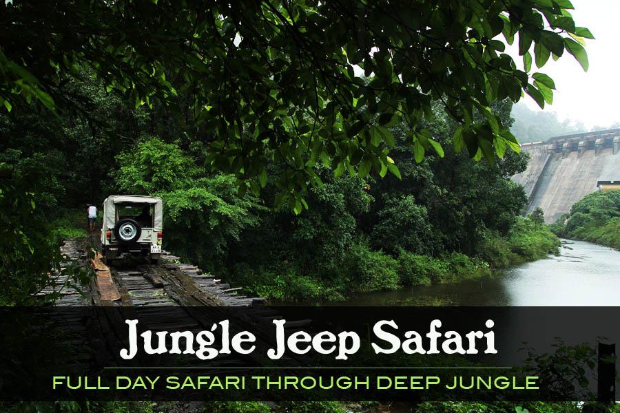 05A . Jungle jeep safari Gavi  (only full day safari) 5.30 AM to 4.00 PM